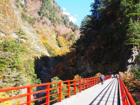 奥鐘橋 紅葉の季節